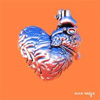 My Head & My Heart