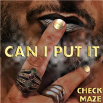 CHECKMAZE - Can I Put It