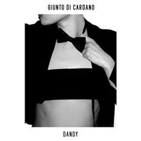 GIUNTO DI CARDANO - Dandy